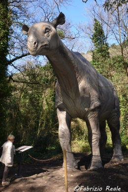 astroni dinosauri in carne ed ossa2
